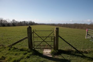 AF gate