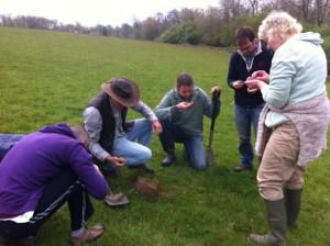 soil surveying