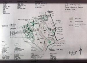 back garden planting plan