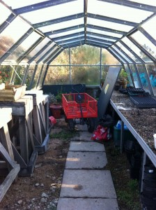 greenhouse before winter
