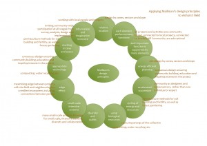 AF principles analysis