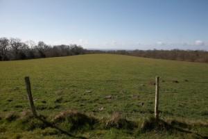 Ashurst Field view