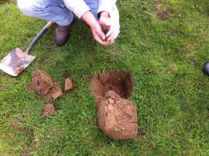 middle field soil